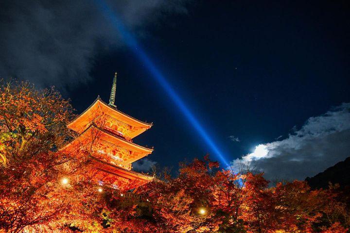 初めての京都観光!絶対にチェックしておきたい8つのエリアはここだ