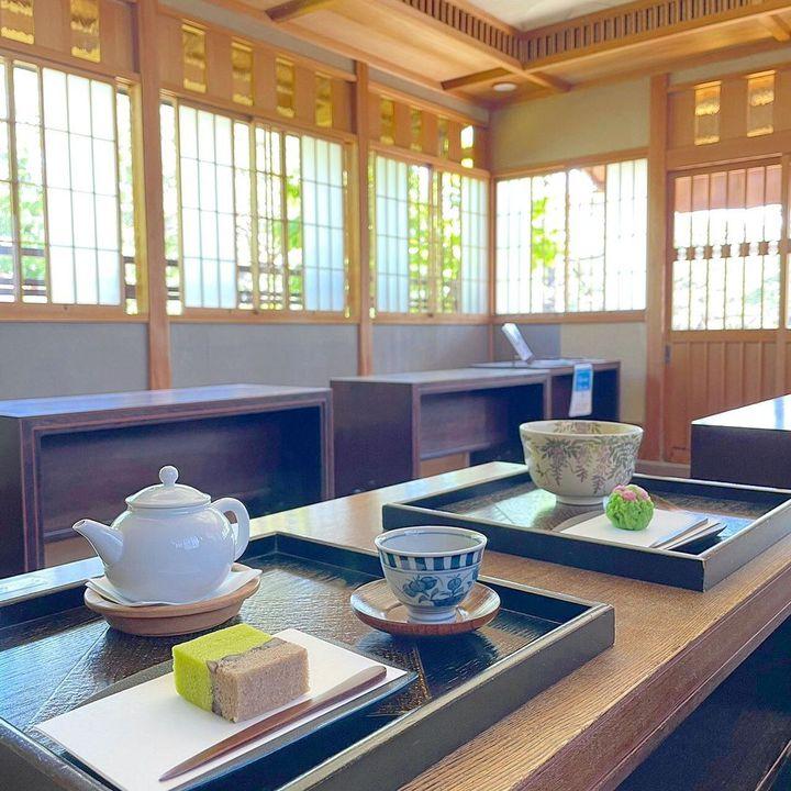 見て、学んで、食べて!静岡で本場の抹茶を巡る日帰りドライブプラン