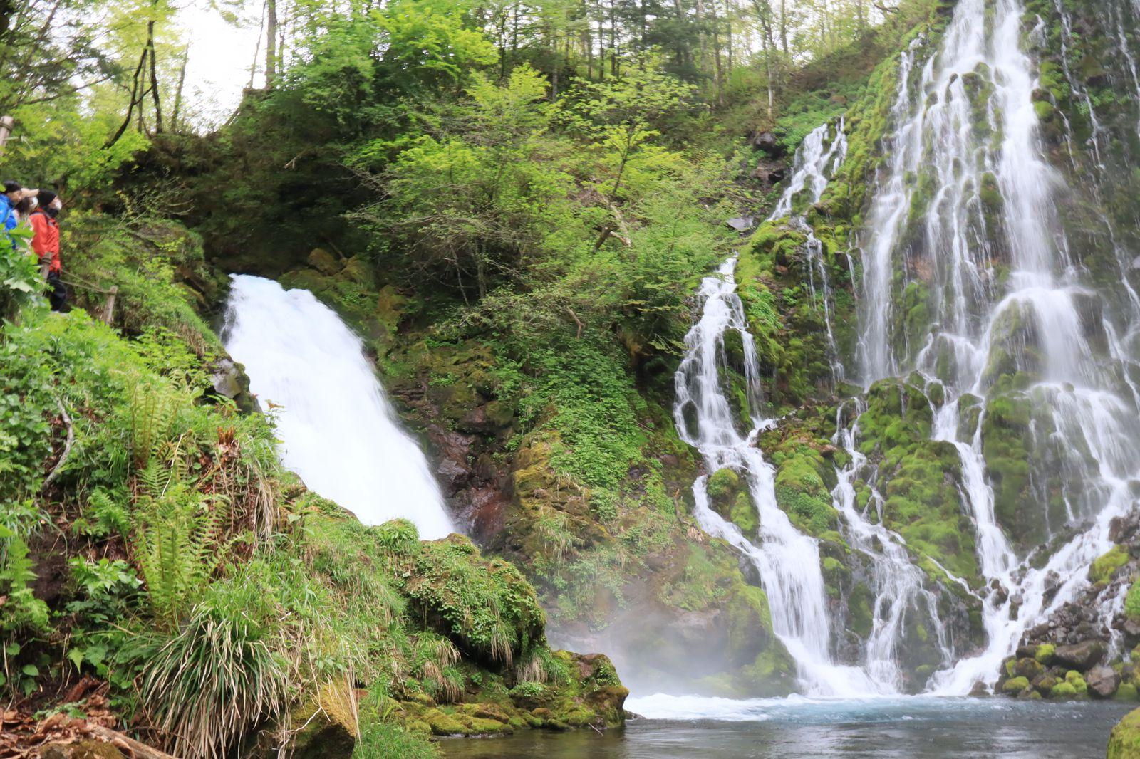 人混みを避けたイマドキな旅へ!「高山・下呂温泉」のお忍び観光スポット5選