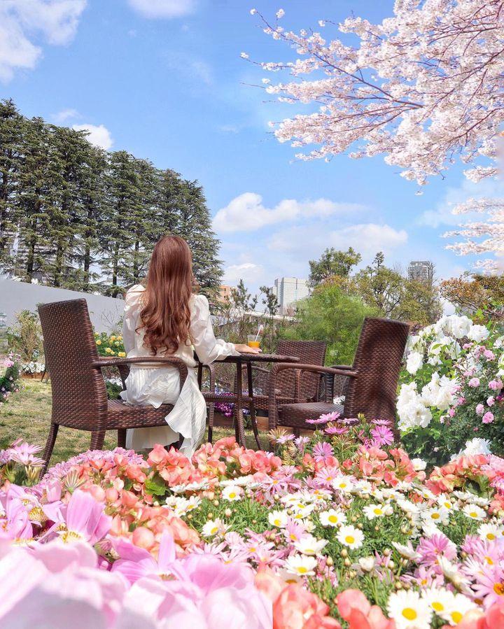 """【終了】お花が咲き誇るこの時期に!東京近郊の""""今週したい7つのこと"""""""