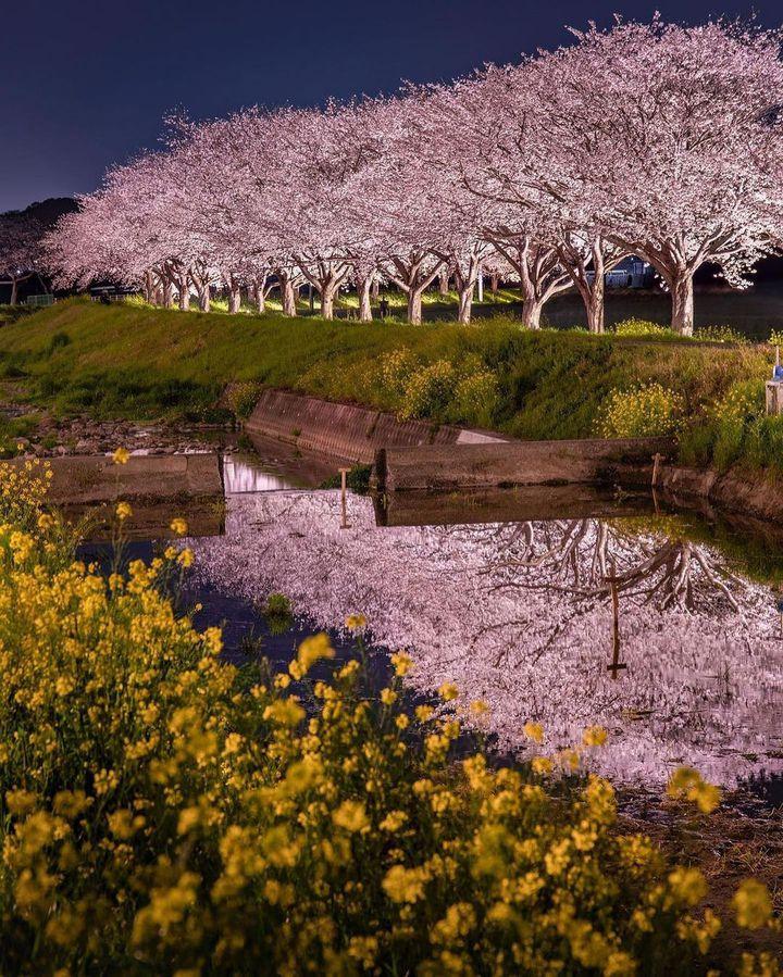 きっと今すぐ行きたくなる♡RETRIP福岡の今週のおすすめスポット7選