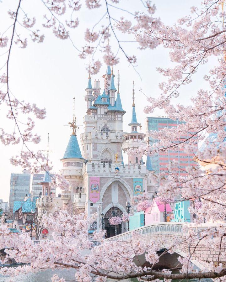 春の絶景もランクイン!RETRIP韓国の3月いいね数ランキング