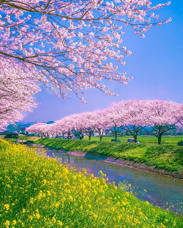 今最も旬な絶景はここ。RETRIP日本の今週のおすすめスポット7選