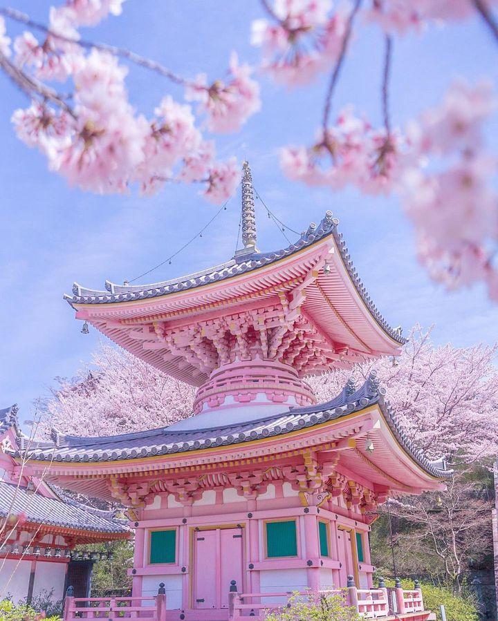 今最も映える春の絶景はこれ。RETRIP日本の今週のおすすめスポット7選