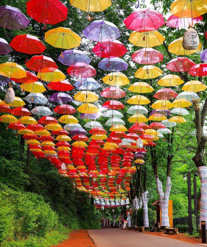梅雨に行きたいトレンドスポットも!東京近郊の今週したいことLIST
