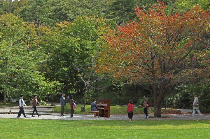 【終了】ピアノを通して人と繋がろう。「軽井沢星野エリア」で「森ピアノ」が開催