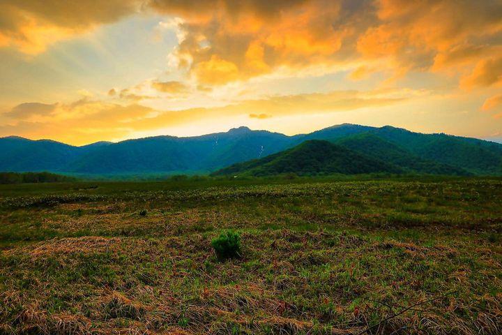 """日本の心に残る大自然。夏が来れば思い出す""""遥かな尾瀬ヶ原""""の魅力とは"""