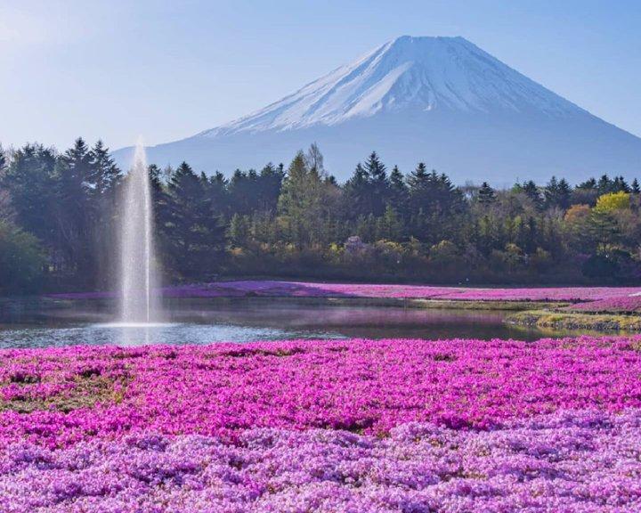 おでかけにぴったりな季節!5月に見ることができる日本全国の絶景20選