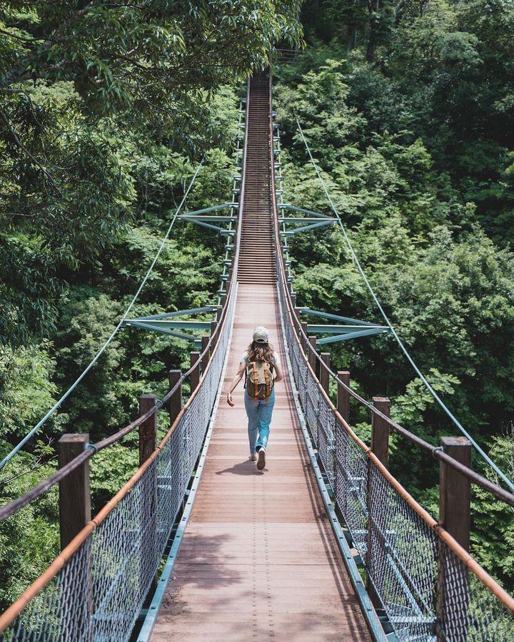 スリルと絶景の吊り橋へ!静岡県にある注目の「吊り橋」スポット11選