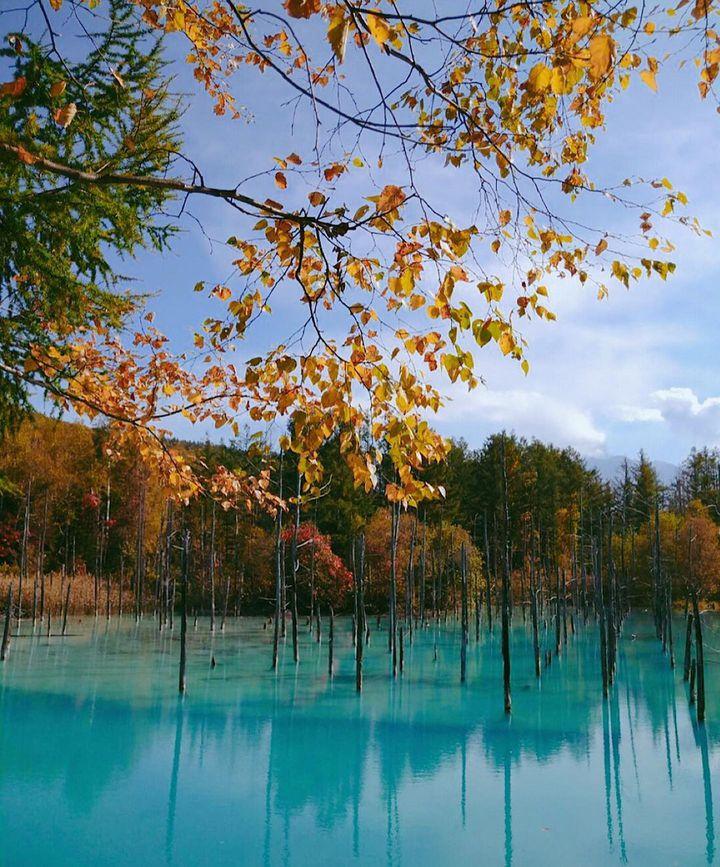 日本の魅力を再発見。秋の女子旅おすすめ国内旅行先&スポット12選