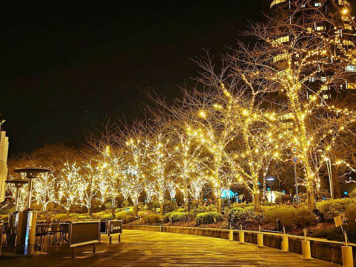 いち早く冬の宝石を。11月上旬から楽しめる東京近郊のイルミネーション8選